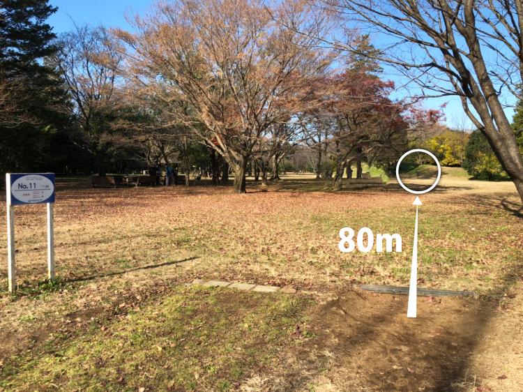 昭和記念公園コース 11番ホール