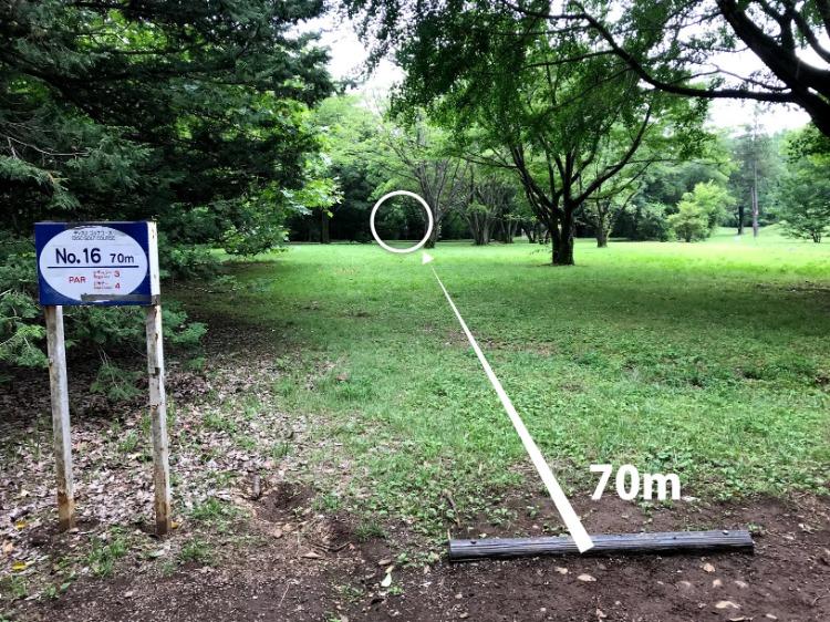 昭和記念公園コース16番ホール