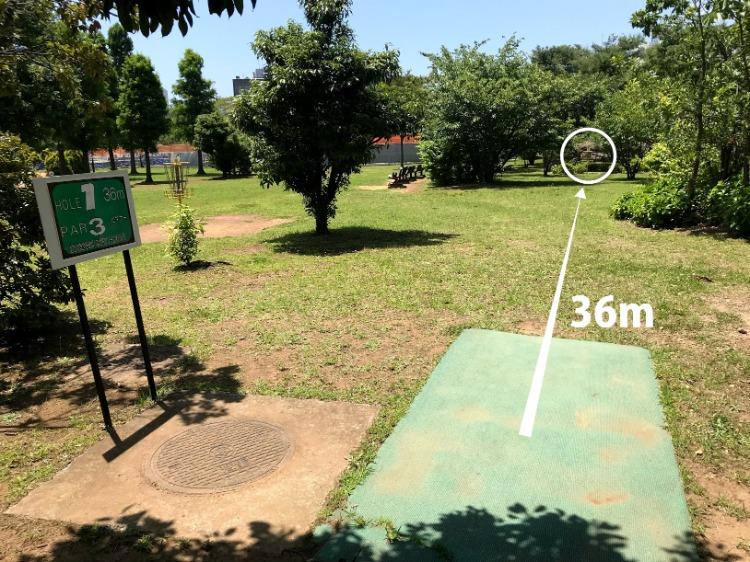 辰巳の森海浜公園ディスクゴルフコース1番ホール