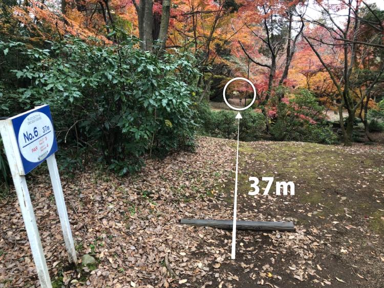昭和記念公園コース6番ホール