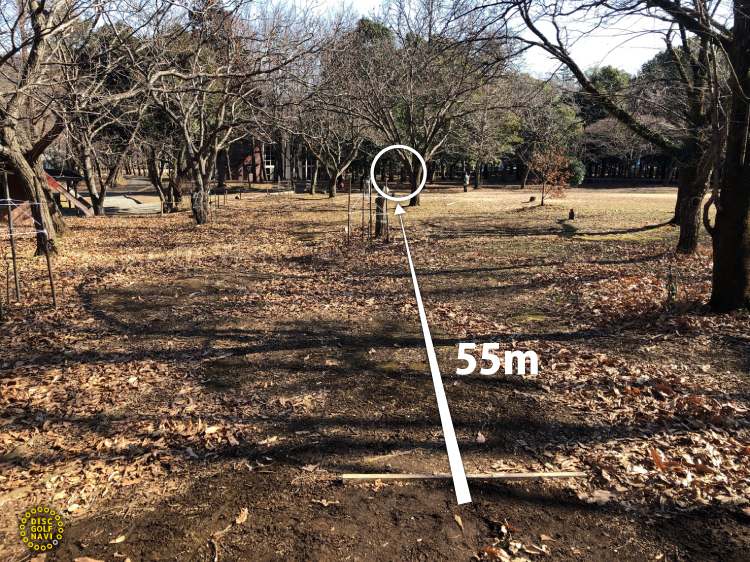 愛川ふれあいの村ディスクゴルフJPDGA公認コース4番ホール