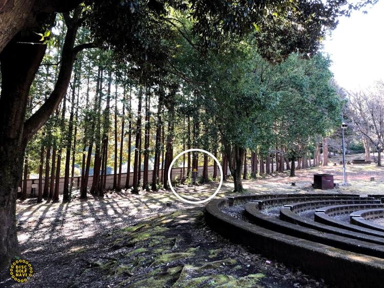 愛川ふれあいの村ディスクゴルフJPDGA公認コース6番ホールゴール付近