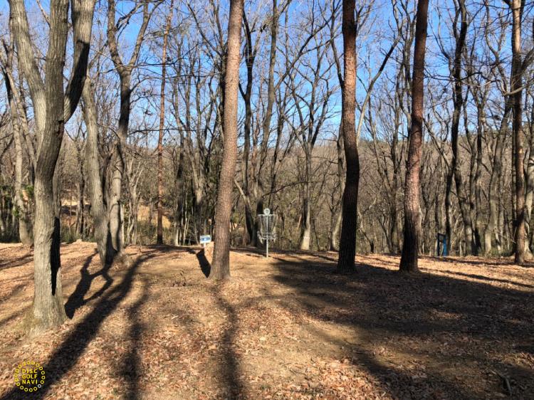 国営武蔵丘陵森林公園ディスクゴルフコース1番ゴール付近