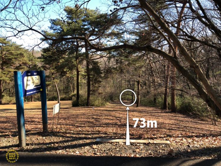 国営武蔵丘陵森林公園ディスクゴルフコース5番